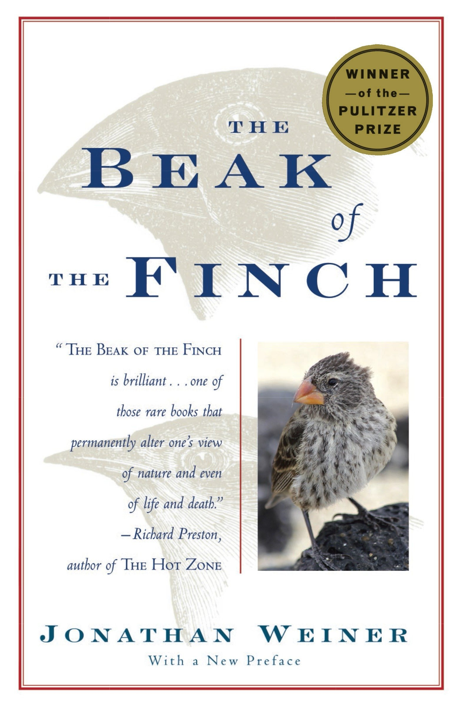 Image result for beak of the finch