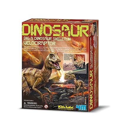 4M Kidz Labs Dig a Velociraptor Skeleton: Toys & Games