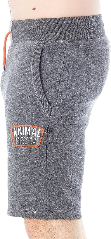 Animal Maxwell Track Shorts Dark Navy Animal Men/'s Clothing Shorts