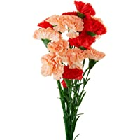Fourwalls Artificial Synthetic Single Carnation Flower Stick