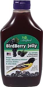 Songbird Essentials Bird Berry Jelly 20 Oz