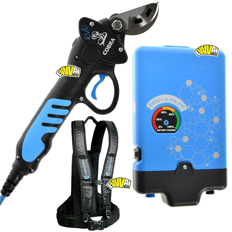 Cobra Obst Evo Elektrische batteriebetrieben elettroforbice Rosenpräsentierschere Campagnola