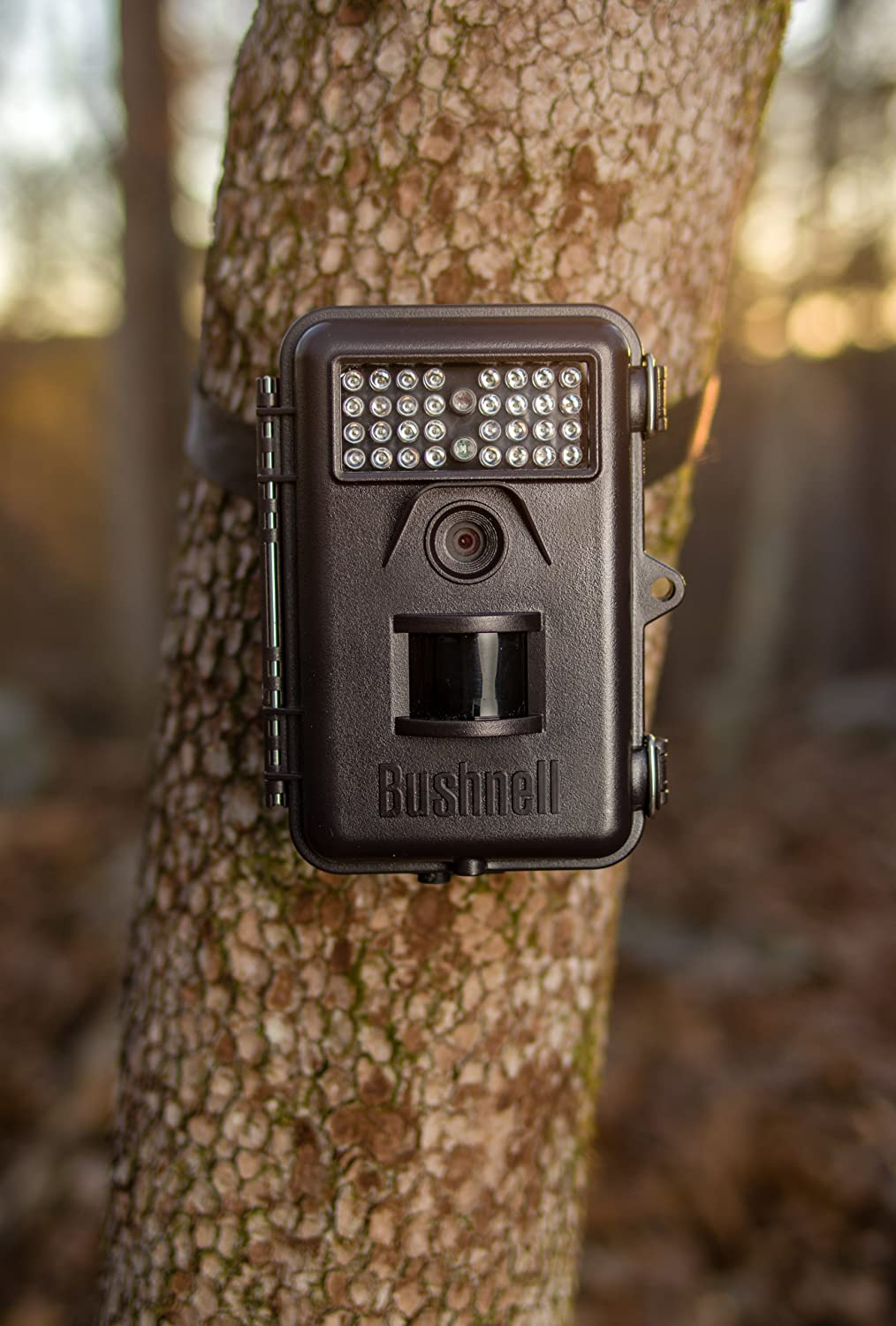 Amazon.com : Bushnell 6MP Trophy Cam Essential Trail Camera with ...