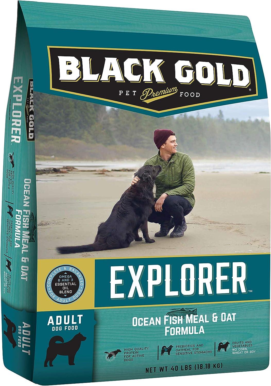 Black Gold Explorer Dry Dog Food, Ocean Fish and Oat Recipe, 40 lb Bag