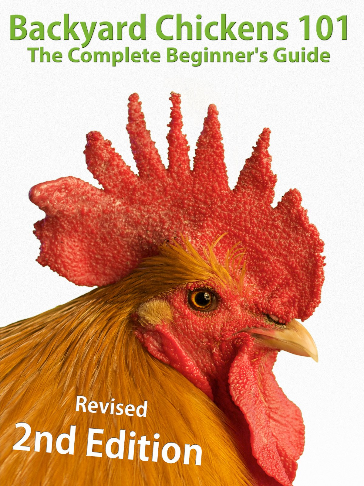 amazon com backyard chickens 101 the complete beginner u0027s guide