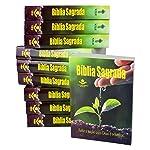 Bíblias Para Evangelismo. Esperança - Caixa com 10 Volumes