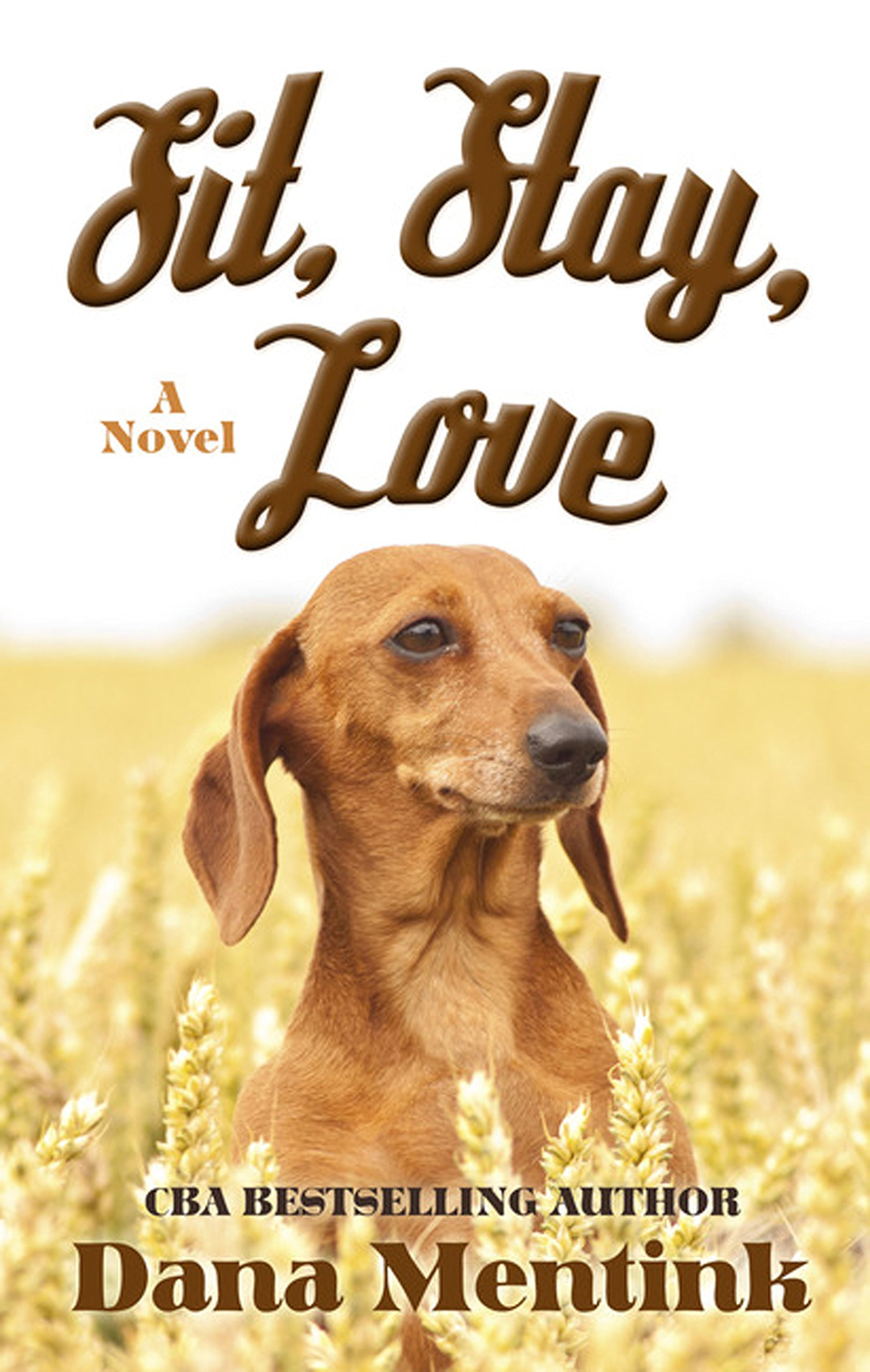 Sit Stay Love (Thorndike Press Large Print Christian Romance) ebook