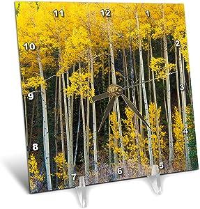 3dRose Danita Delimont - Autumn - Colorado Aspen in Fall - Desk Clocks (dc_344997_1)