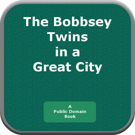 The Bobbsey Twins in a Great City PDF