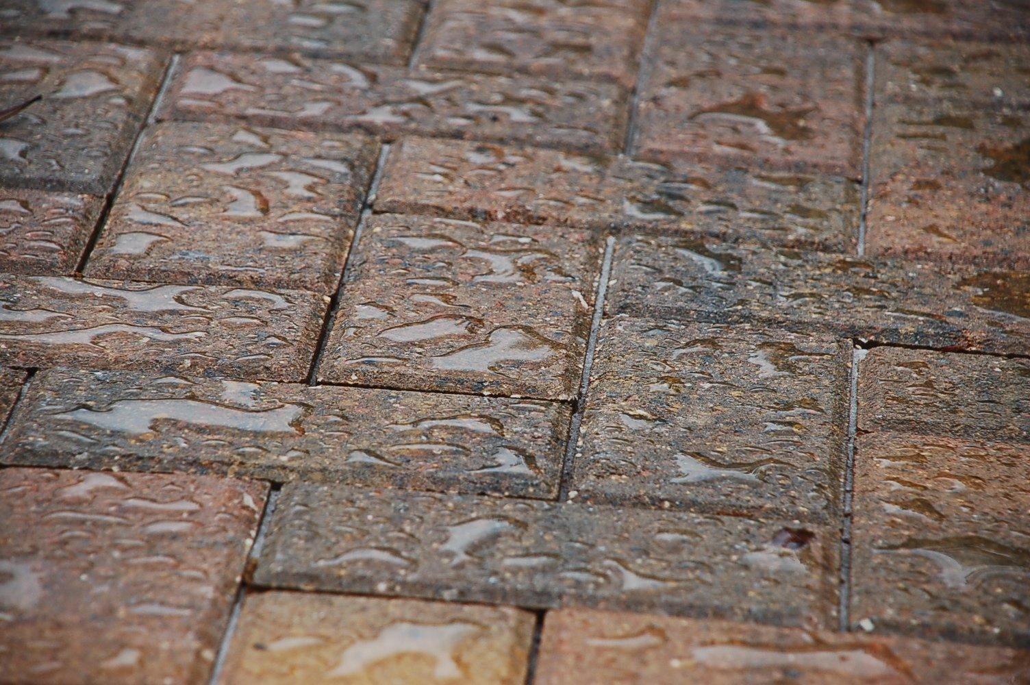 Rainguard Advanced Waterproofer Concentrate (Each 6 oz Pod Makes 1 gal) for Masonry, Concrete, Brick, Wood, Stone Sealer for Driveways, Decks, Patios, Walkways, Pavers, Fences (Case of 12)