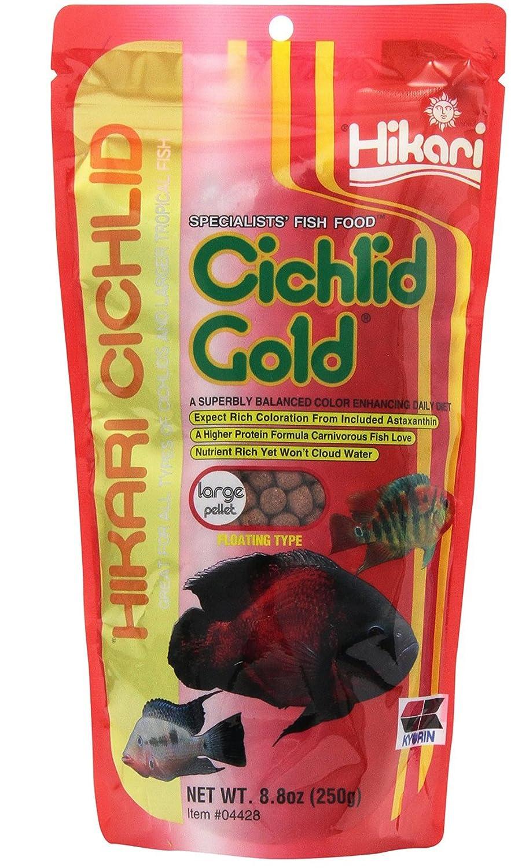 Hikari 8.8-Ounce Cichlid Gold Floating Pellets for Pets, Large [2-Pack[