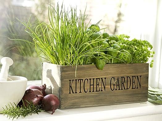 kitchen herb garden kit windowsill window box planter with seeds - Herb Garden Ideas Uk