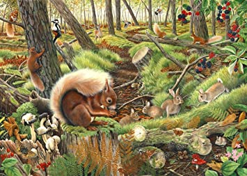 1000 Piece Jigsaw Puzzle - Save Our Squirrels
