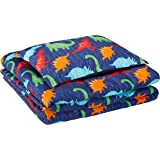 AmazonBasics Kid's Comforter Set - Soft, Easy-Wash Microfiber - Twin, Multi-Color Dinosaurs