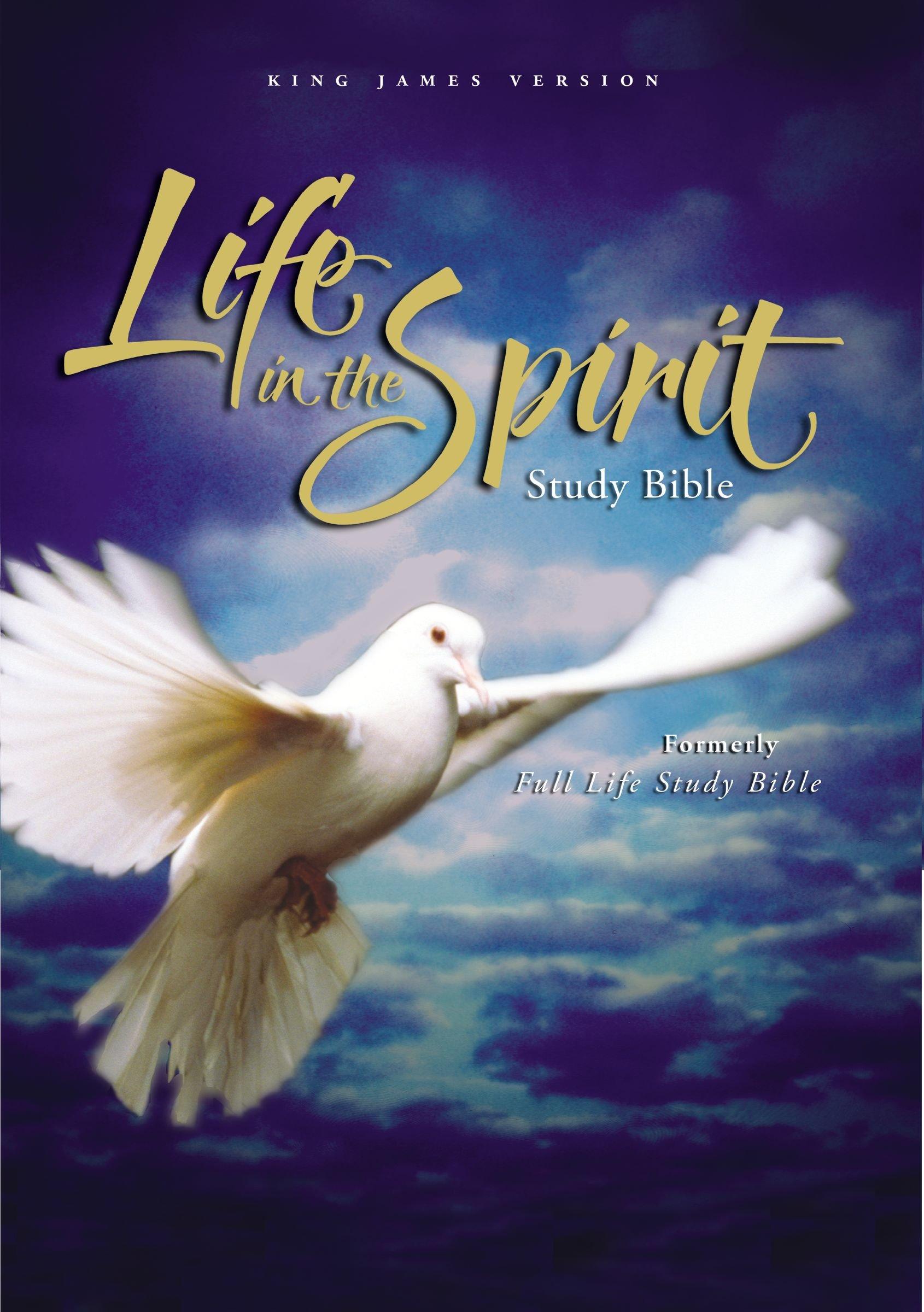 Download KJV Life in the Spirit Study Bible ebook