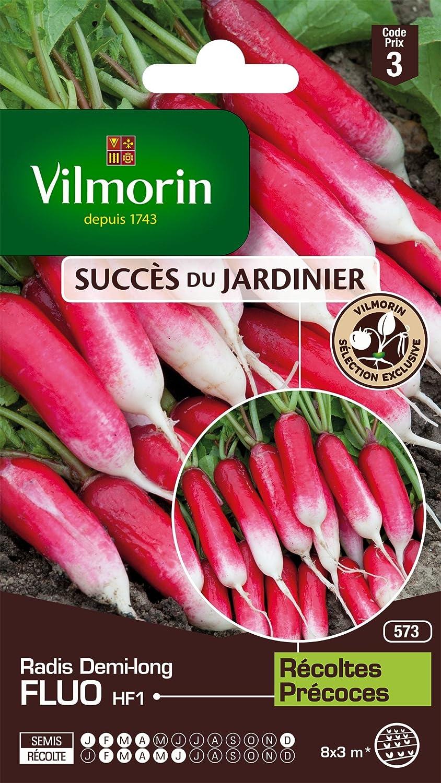 Vilmorin 3887443 Pack de Graines Radis Fluo HF1 Cré ation