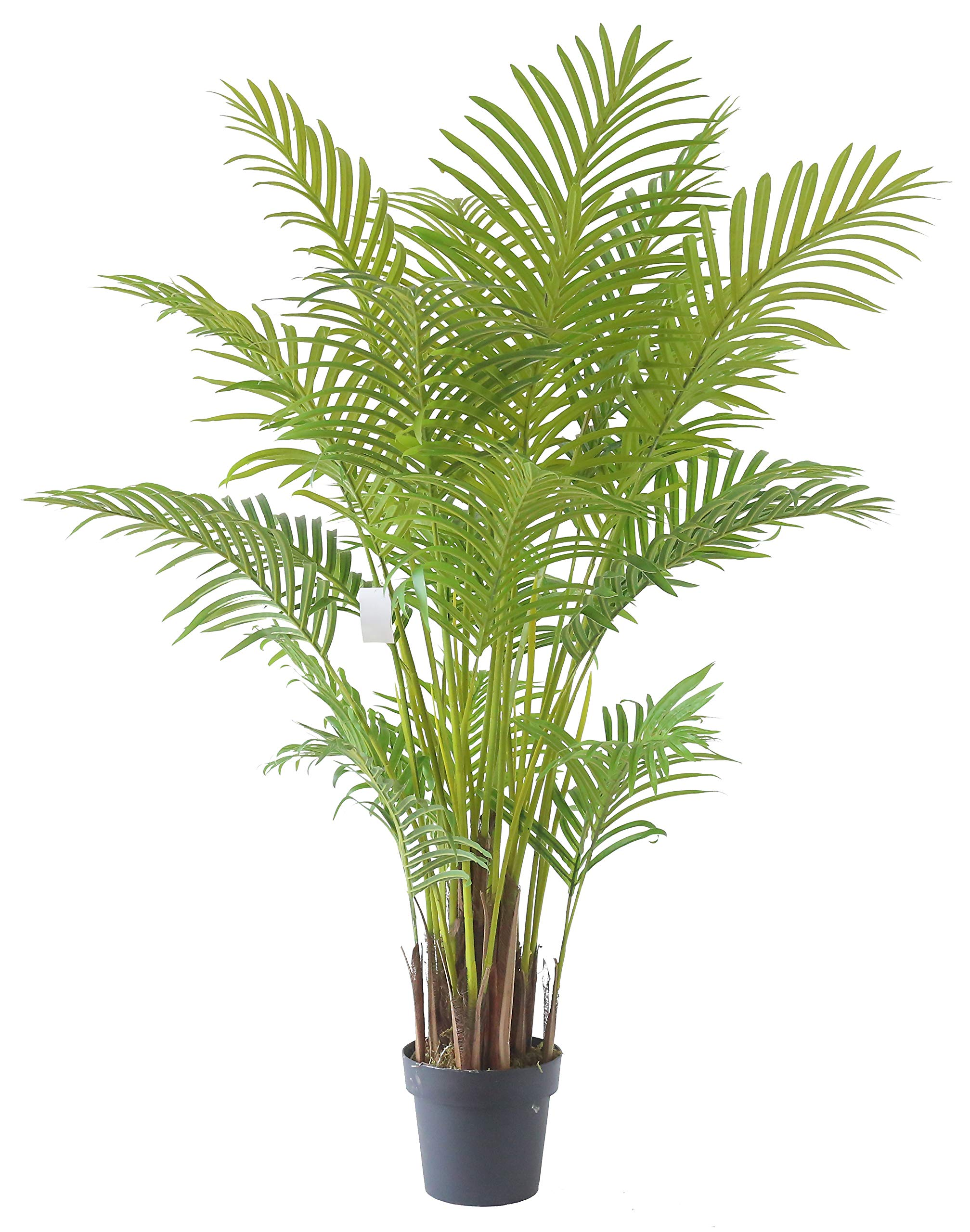 AMERIQUE Gorgeous and Detailed 4.7' Tropical Palm Tree Artificial Silk Plant with UV Protection, with Nursery Plastic Pot, Super Quality, Feet, Green by AMERIQUE