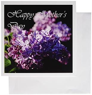 3DROSE Lavender Lilacs fotografia su sfondo nero Happy Mothers Day–Biglietti di auguri, 6da 15,2cm, set di 6(GC 113912_ 1) 6da 15 2cm set di 6(GC 113912_ 1) gc_113912_1