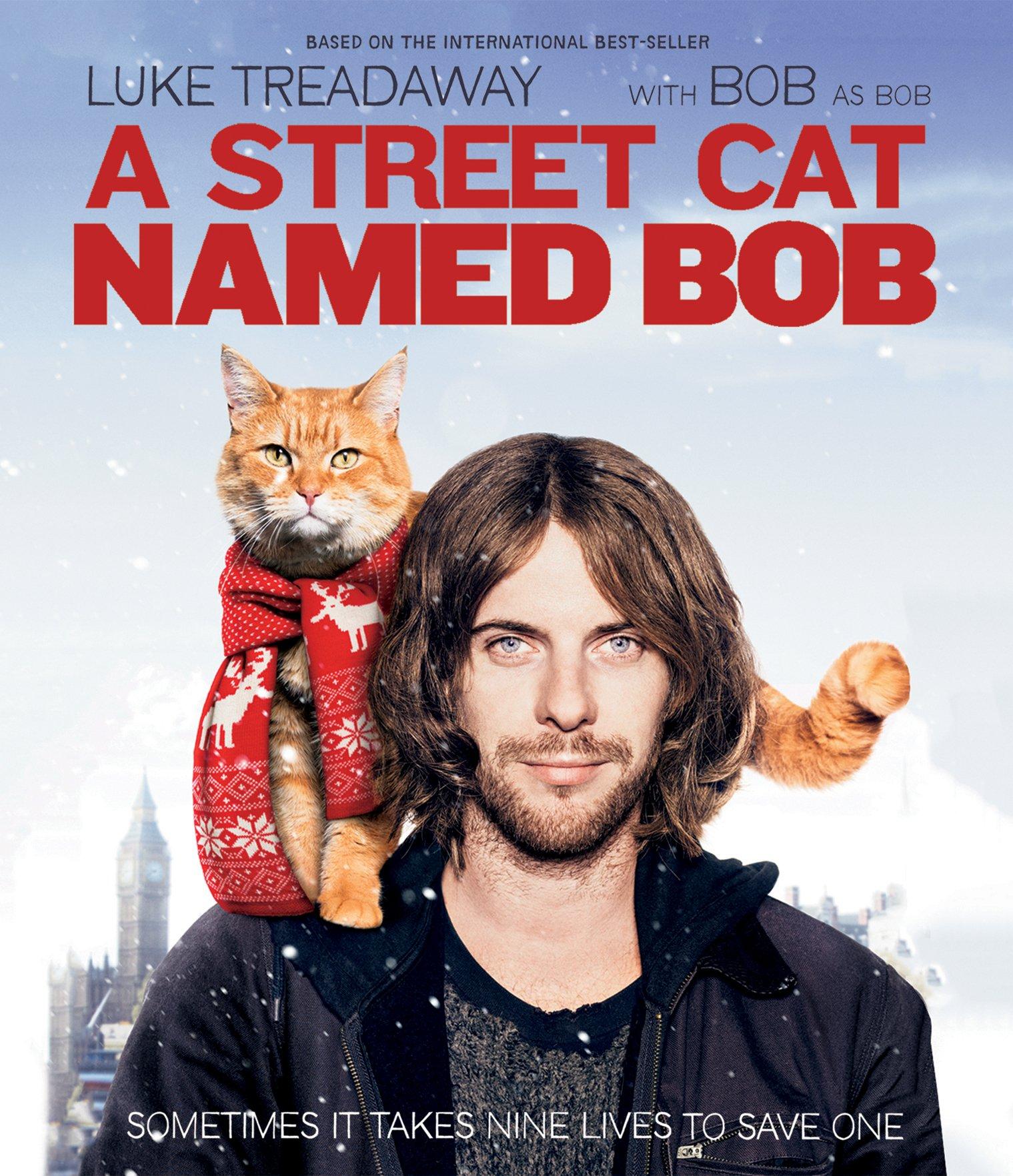 A Street Cat Named Bob (Blu-ray)
