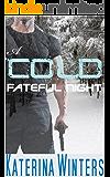 A Cold Fateful Night: An adventure Romance