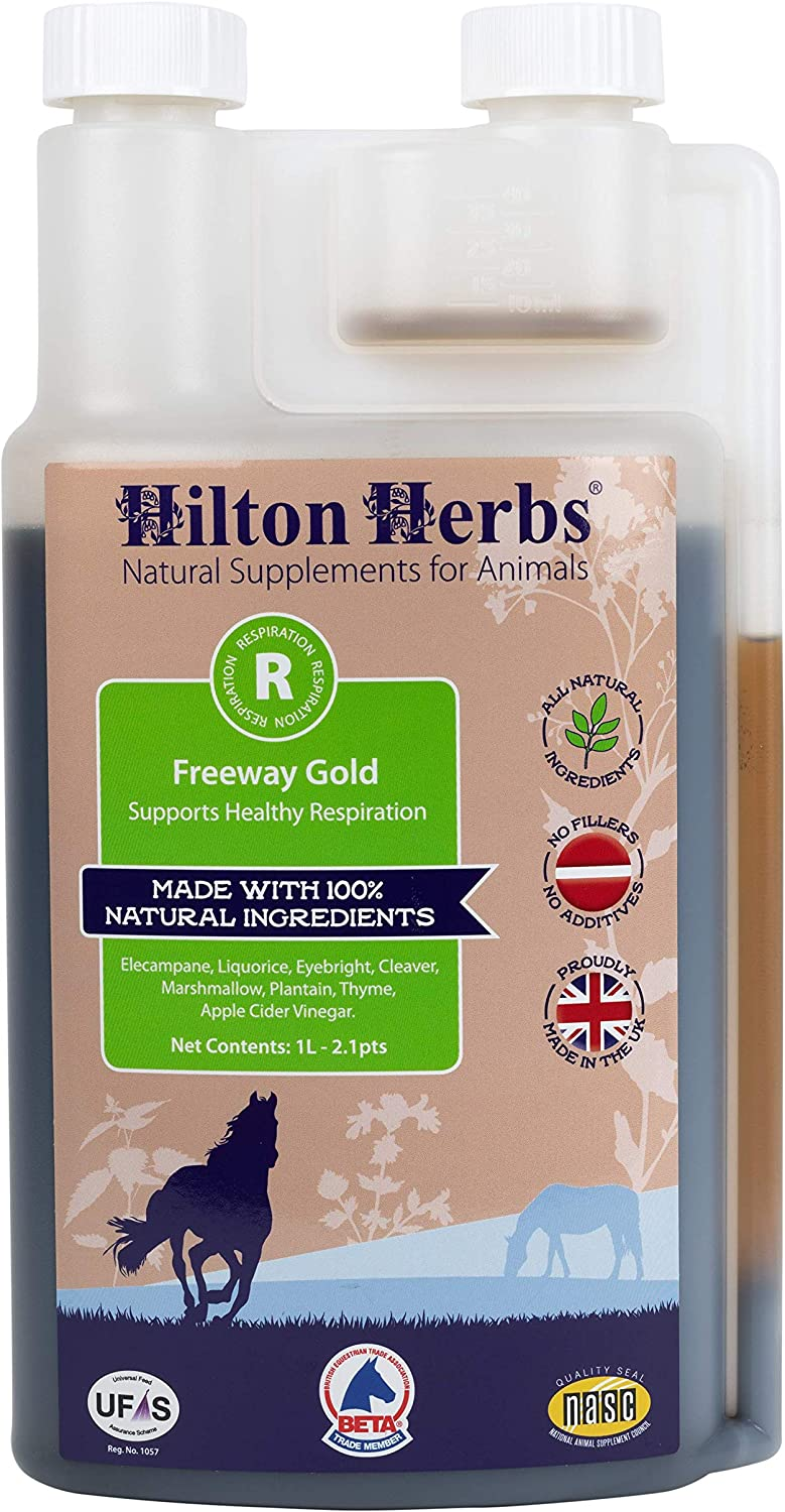 Hilton Herbs Freeway Gold Liquid Respiration Supplement for Horses, 2.1pt Bottle : Horse Nutritional Supplements And Remedies : Pet Supplies