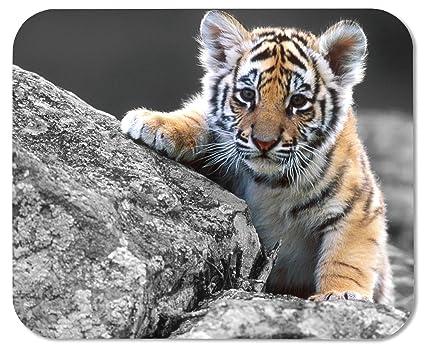 Amazon cute tiger cub customized rectangle mousepad gaming cute tiger cub customized rectangle mousepad gaming mouse pad mouse mat altavistaventures Gallery