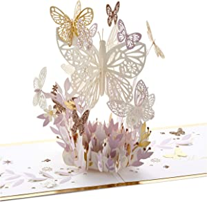 Hallmark Signature Paper Wonder Pop Up Card, Thankful for You (Thinking of You Card or Birthday Card)