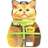 Dingo Reflective Harness with Leash for Cat Safety, Made of Fabric Green 21601