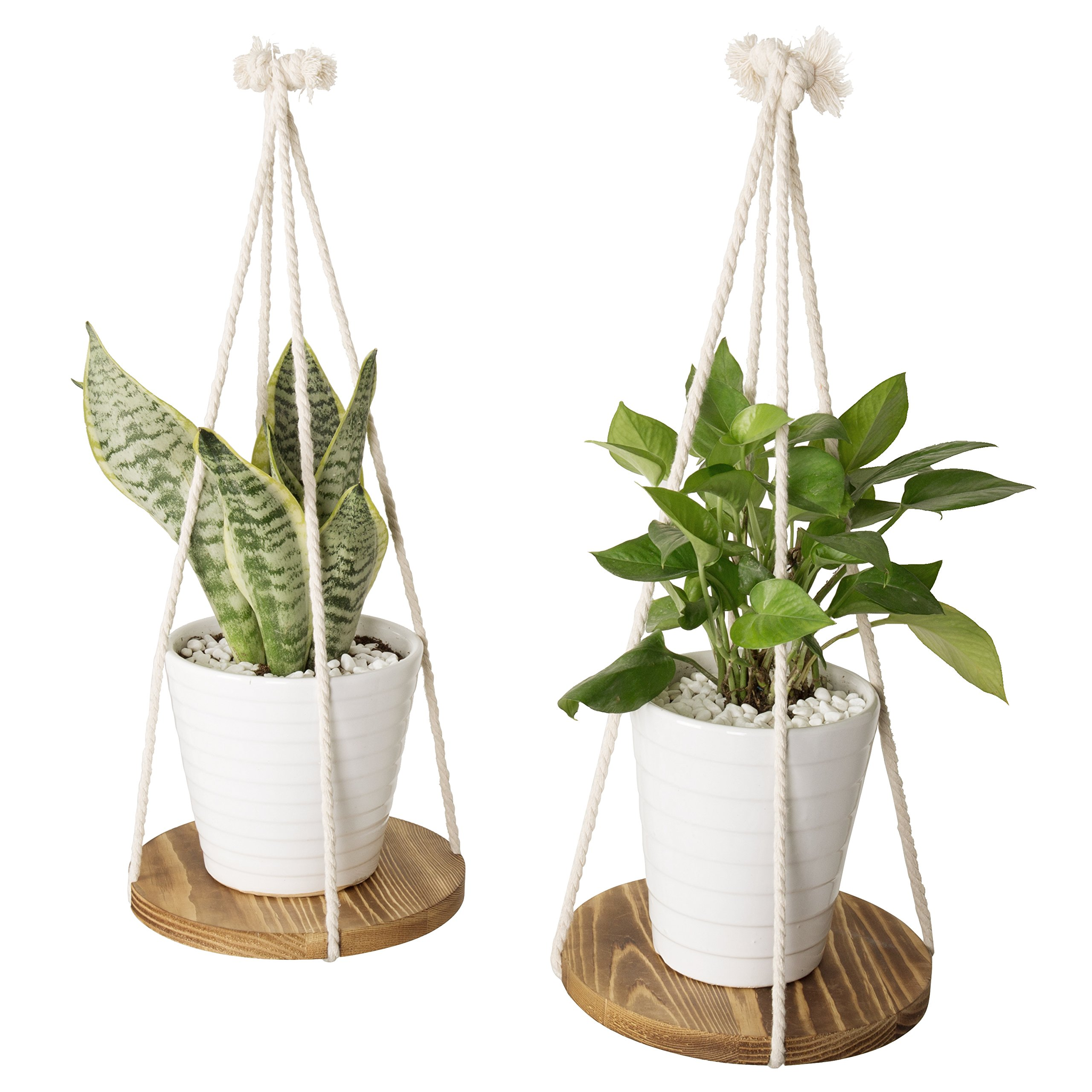 9-Inch Round Burnt Wood Hanging Plant Stand with Rope Hangers, Set of 2 by MyGift