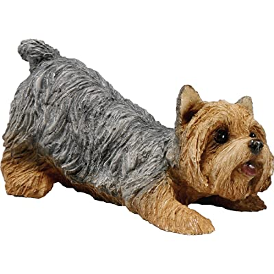 Sandicast Small Size Yorkshire Terrier Sculpture - Crouching: Home & Kitchen