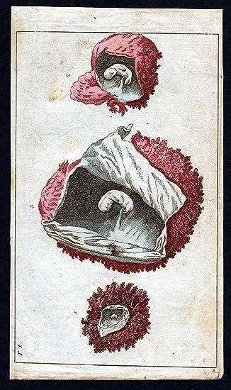 Grafik Baby Gebärmutter fetus womb Anatomie anatomy Medizin medicine ...