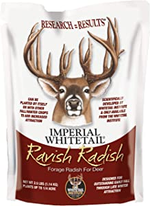 Whitetail Institute Ravish Radish Deer Food Plot Seed, High Production Annual Forage Radish Seed Varieties to Attract and Hold Deer Throughout Fall and Winter, 2.5 lbs (.25 Acre)