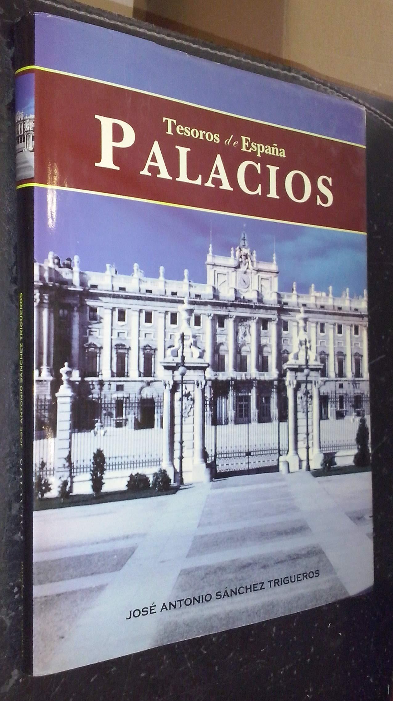 Tesoros de España 2. Palacios: Amazon.es: SÁNCHEZ TRIGUEROS, José Antonio: Libros