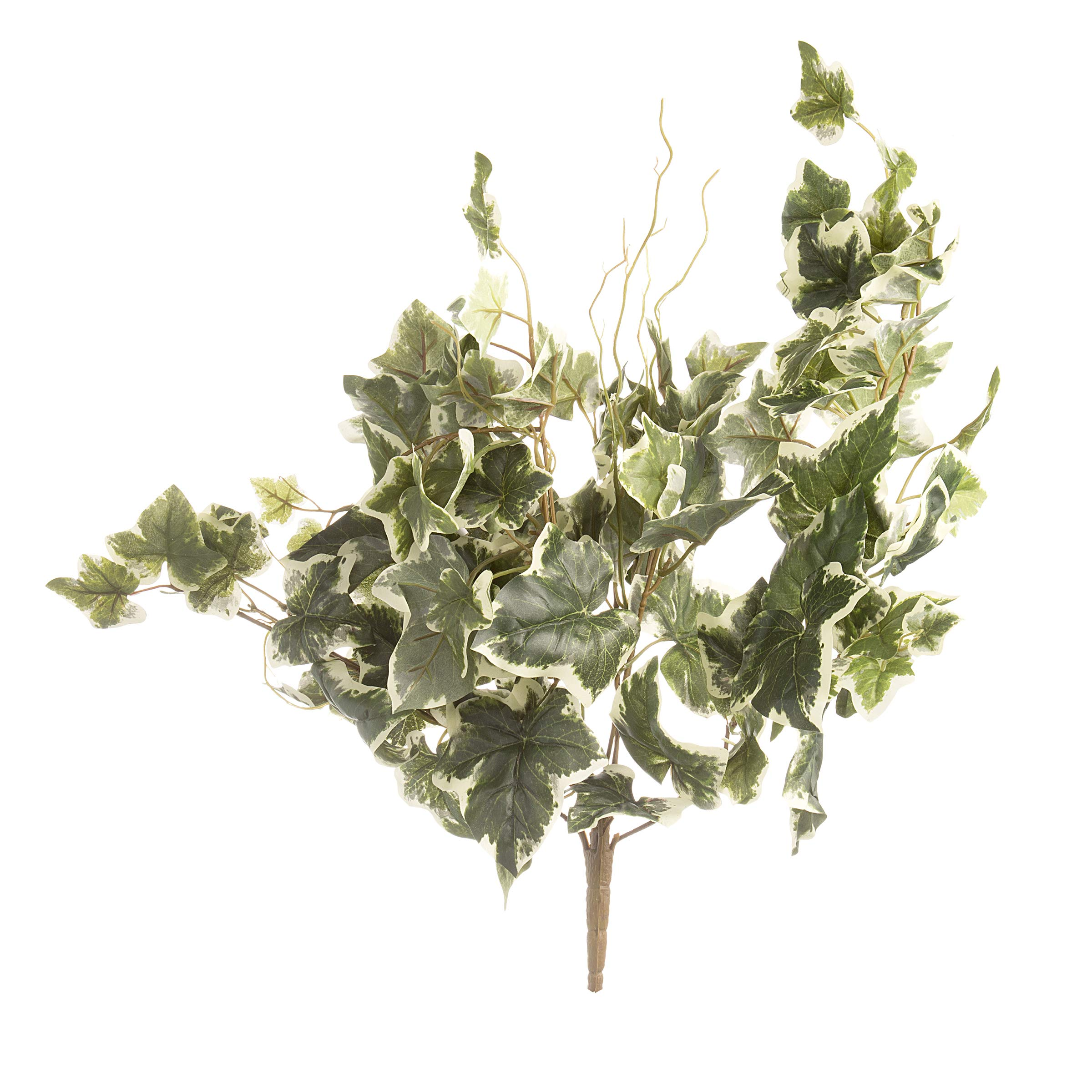 Darice 30004187 English Ivy Bush: White/Green, 26 inches, 5 Tips Artificial Plant