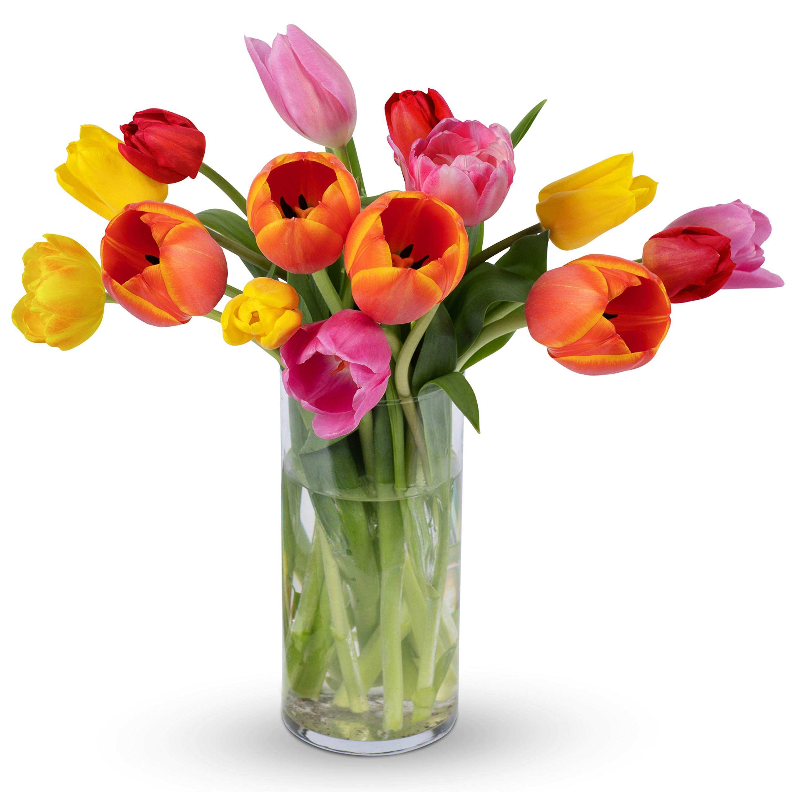 Amazon Com Kabloom Bouquet Of Fresh Yellow Tulips With