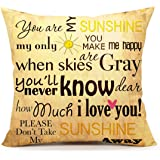 You are my Sunshine Love Quotes Home Decorative Vintage Throw Pillow Cover Cusion Case Cotton Linen 18 x 18 Inches(Summer Beach Decor)