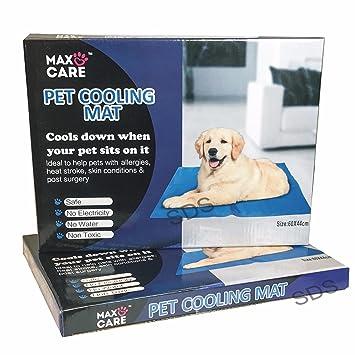 Perro Gato Mascota refrigeración Cool Alfombrilla de gel para cama 60 x 44 cm, color