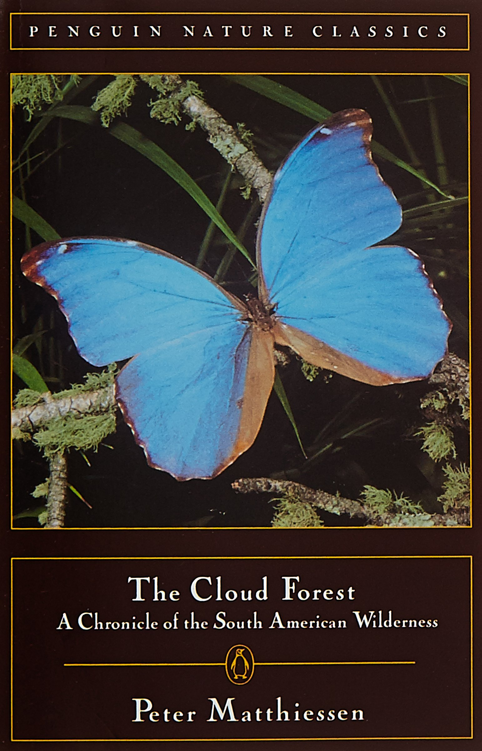 Cloud Forest: A Chronicle Of The South American Wilderness: Peter  Matthiessen: 9780140255072: Amazon: Books