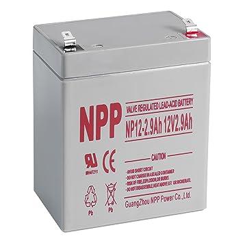 Amazon.com: NPP 12 V, 2,9 Amp NP12 2,9 Ah recargable batería ...