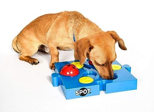 Spot Seek-A-Treat
