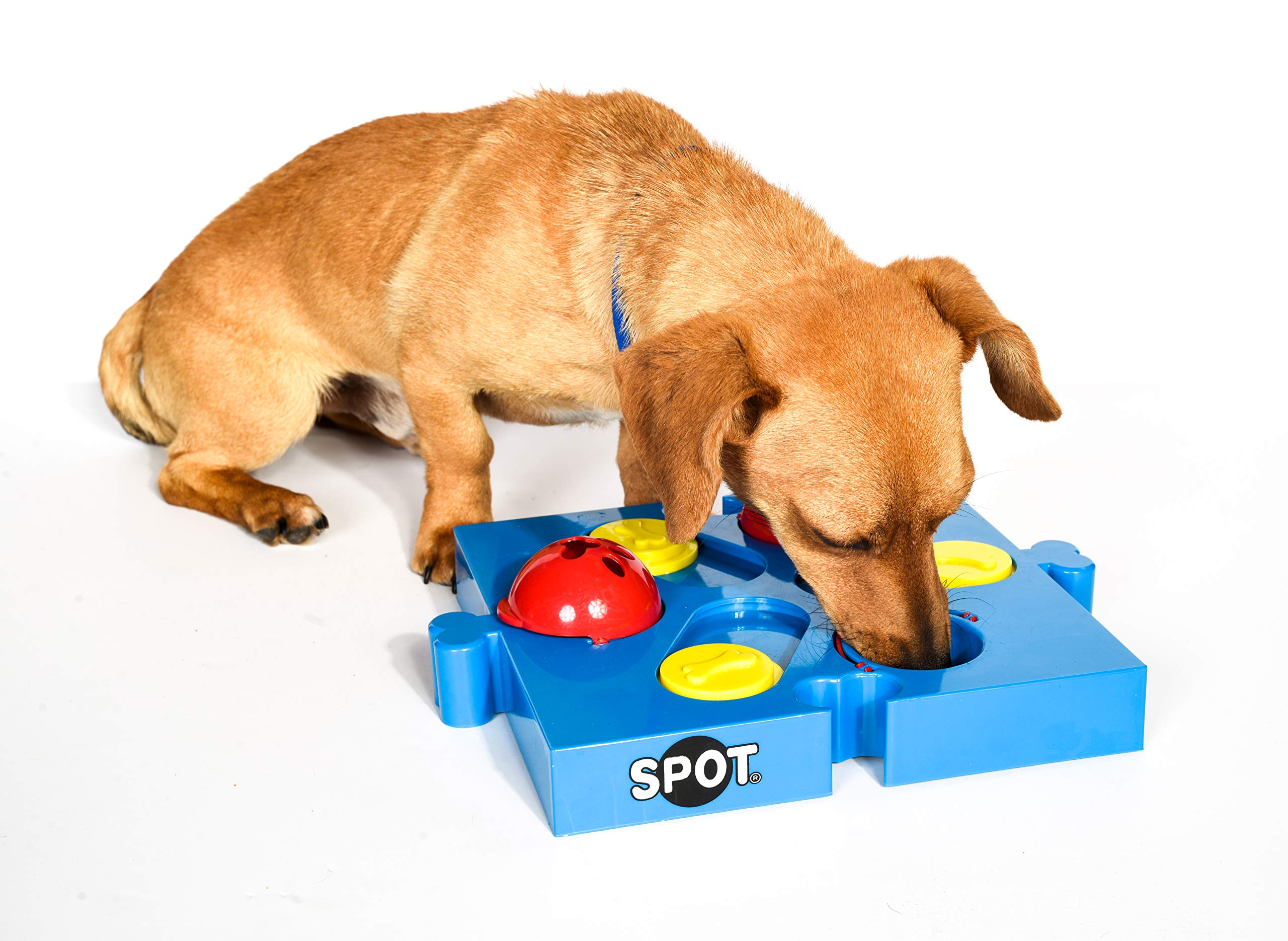 SPOT Seek-a-Treat Flip 'N Slide Treat Dispenser for Dogs | Dog Treat Dispenser | Dog Treat Dispenser Toy | Interactive Puzzle | Dog Treat Toys for Boredom | Dog Treat Toy Puzzle | Dog Toy Games