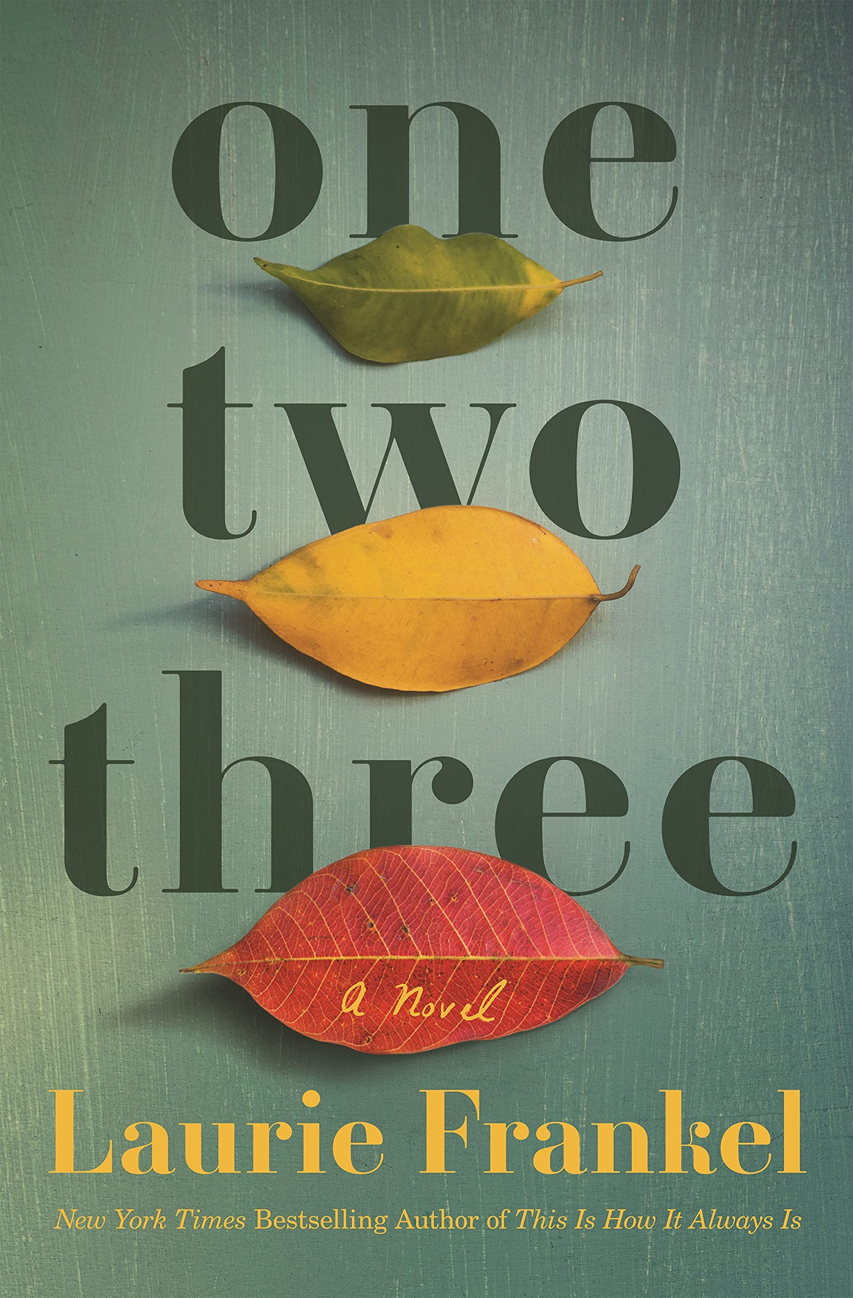 One Two Three: A Novel: Frankel, Laurie: 9781250236777: Amazon.com: Books