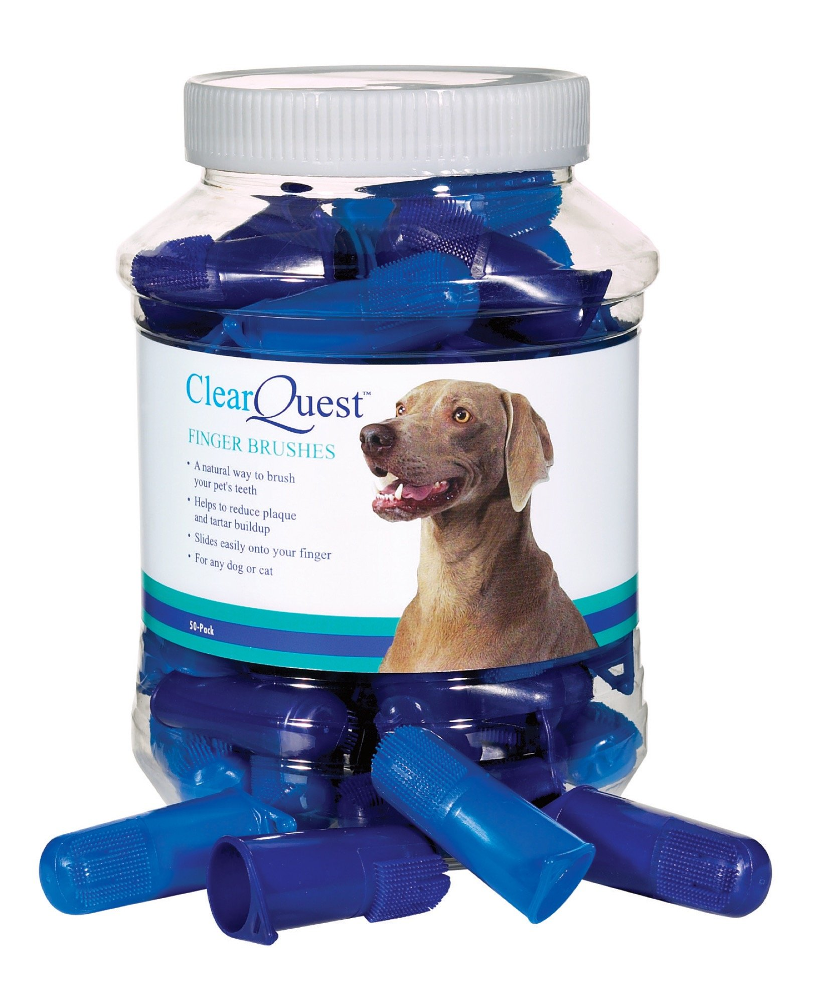 ClearQuest Finger Brush Canisters - Convenient Toothbrushes for Cleaning Pets' Teeth, 50-Pack by ClearQuest