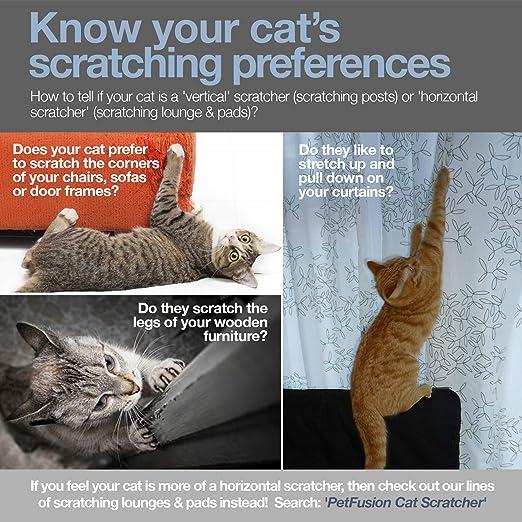 PetFusion Rascador y Poste Vertical para Gatos de 3 Lados (tamaño Grande, Gris cálido): Amazon.es: Productos para mascotas