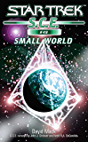 Star Trek: Small World (Star Trek: Starfleet Corps of Engineers Book 49)