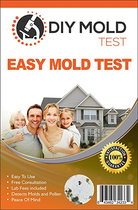 DIY Mold Test Mold Testing Kit 3 tests Lab Analysis and Expert