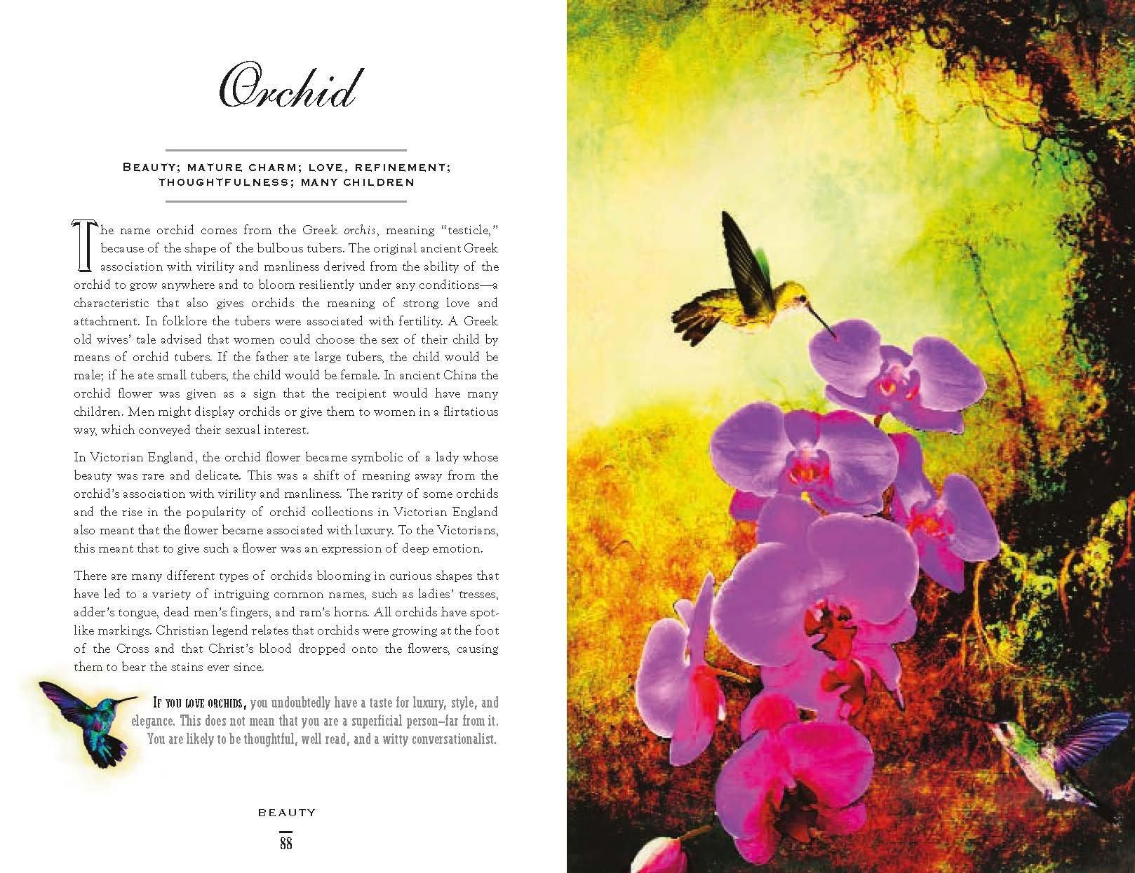 The Secret Language Of Flowers Samantha Gray 9781782492054 Amazon