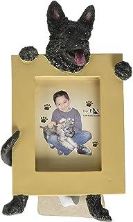 E/&S Pets 35315-16 Small Dog Frame