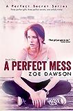 A Perfect Mess (Hope Parish Novels Book 1)