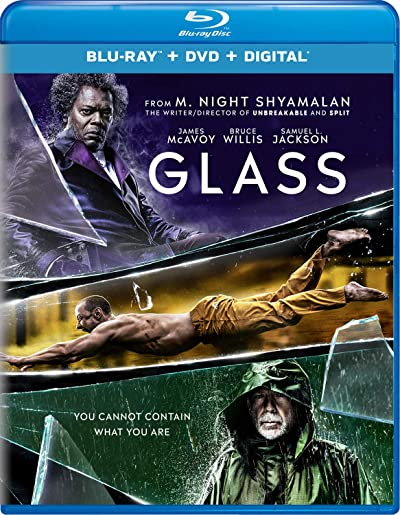 Glass 2019 BluRay Dual Audio In Hindi 300MB